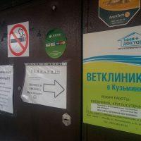 Ветклиника 24 часа на Жигулевской
